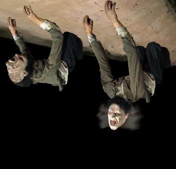 Ceiling Dweller Freak - CD935