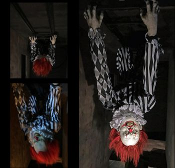 Ceiling Dweller Clown Flyer - CDCF1144