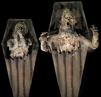 Coffin Mummy Revenge - CMR920