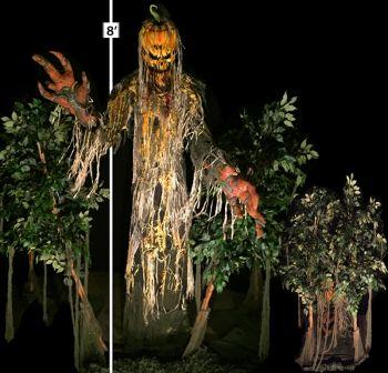 Pumpkin King Lunger-PKL1009