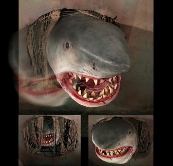 SHARK ATTACK - SA1316