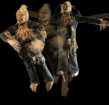 Scarecrow Flyer 2.0 - SF1329