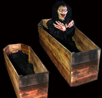 Vampire Coffin - VC703